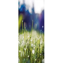 Deursticker grassprieten