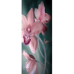 Deursticker orchidee en vlinder