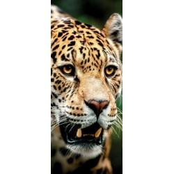 Deursticker Jaguar