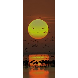 Deursticker zonsondergang met vogels